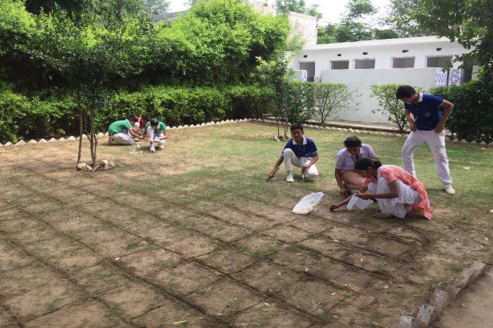 Shaheed Amar Singh Public School-Activity