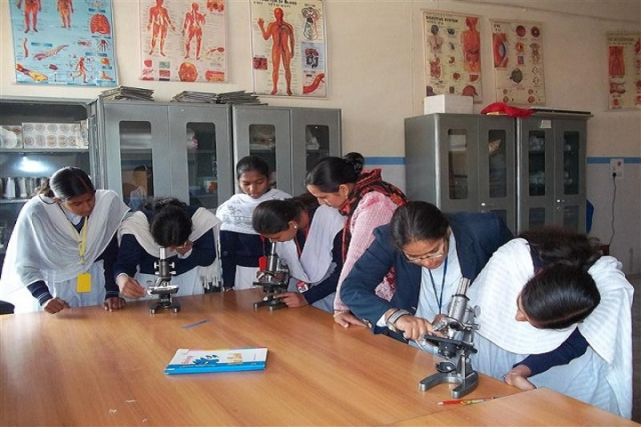 Sheetla Public School-Laboratory