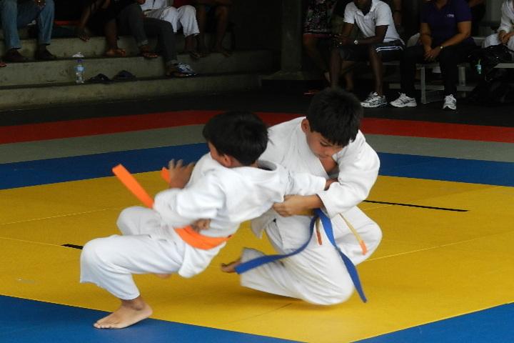 Shri Lajja Ram Bashesar Dass Gurukul Vidyapeeth-Karate Activity