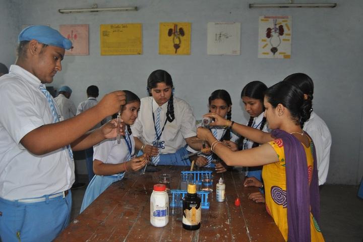 Sir Jawahar Singh Public School-Chemistry Lab
