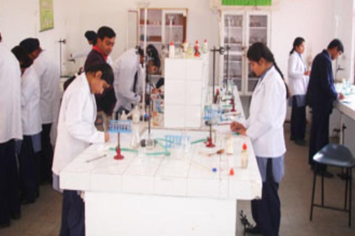 Spring Fields Public School-Chemistry-Lab