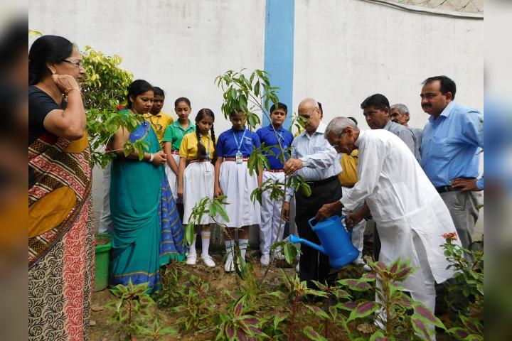 Sugni Devi Arya Girls Senior Secondary School- Tree Plantation