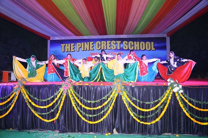 The Pine Crest School - Annual Function