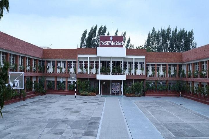 The S D Vidya School-Campus-view