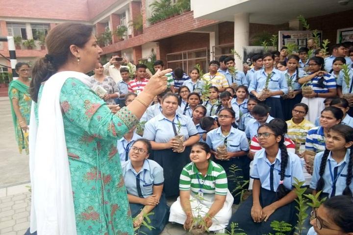 The S D Vidya School - Tree Plantation