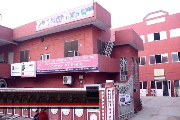 Triveni Memorial Senior Secondary School-Campus view