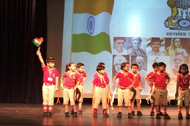 Vidya Mandir Public School-Independence day