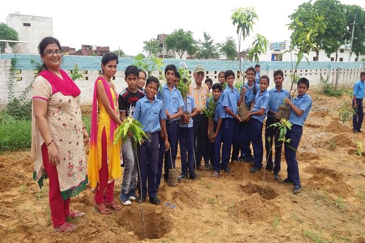 Vivekanand Public School-Plantation