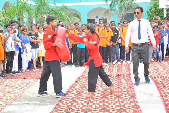 Wellwisher Public Senior Secondary School-Activity