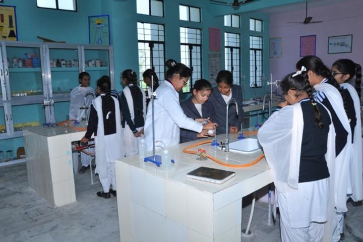 Wellwisher Public Senior Secondary School-Chemistry Lab
