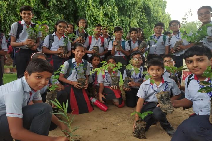 West Academy-Tree Plantation