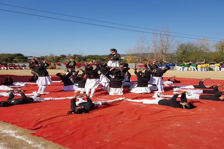 Chail Public School-Dancing Activity