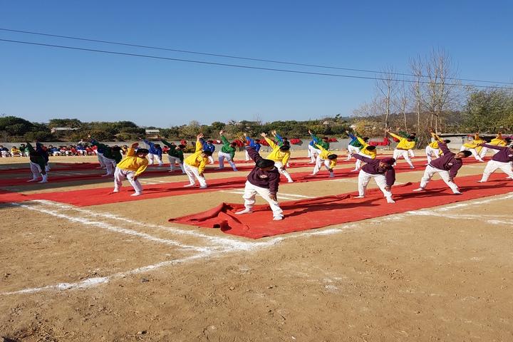 Chail Public School-Yoga Activity