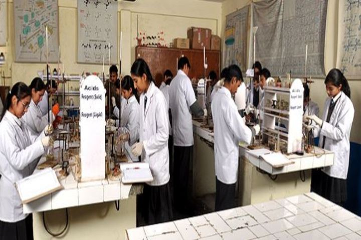 D A V Centenary Public School-Laboratory
