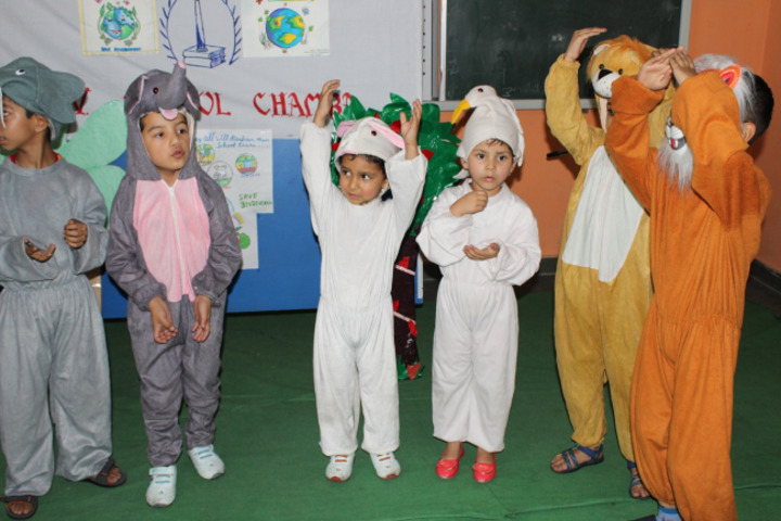 DAV Public School-Fancy Dress