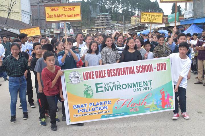 Love Dale Residential School-Environment day