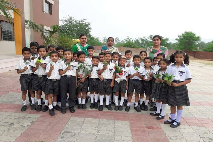 De Montreal Convent School-Tree Plantation