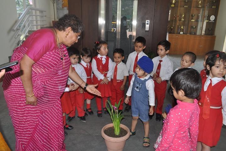 La Montessori School-Environment-Day