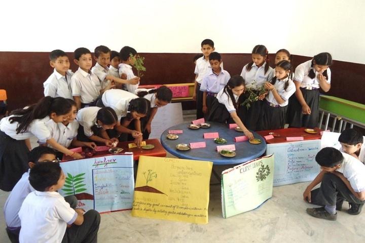 RK International School-Activities