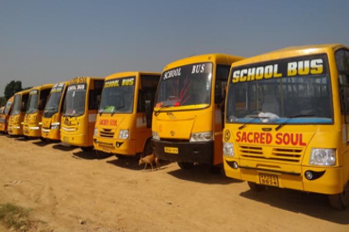 Sacred Soul Cambridge School-Transport