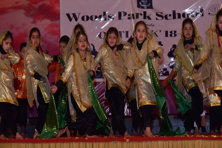 Woods Park School-Events dance