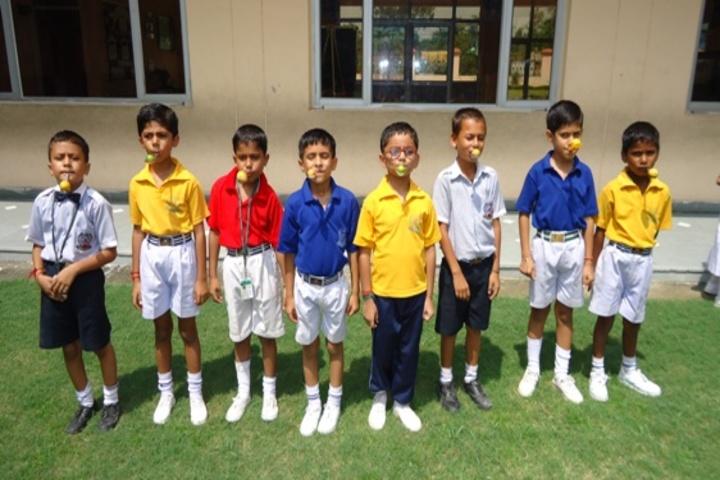 DCM Public School-Games