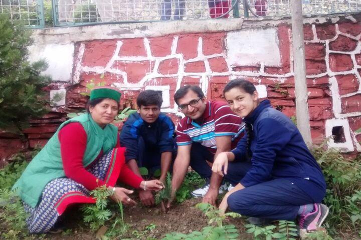 Jawahar Navodaya Vidyalaya-Tree Plant