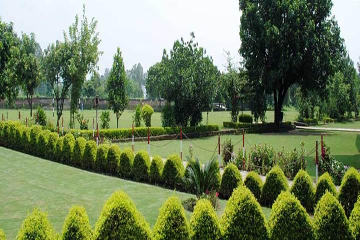 K C International School-Campus View