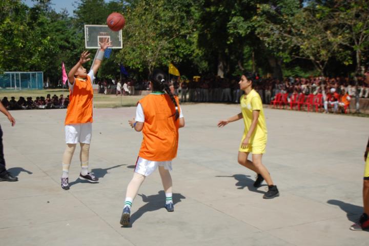 Maharaja Harisingh Agricultural Collegiate School-Game