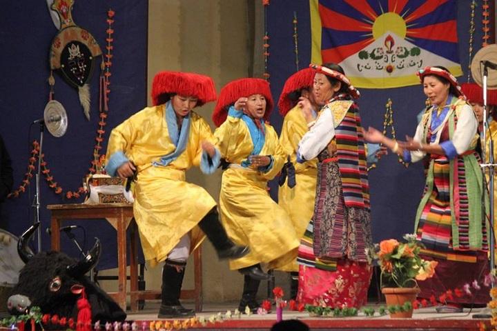 The Tibetan Sos Childrens Village School-Events dance