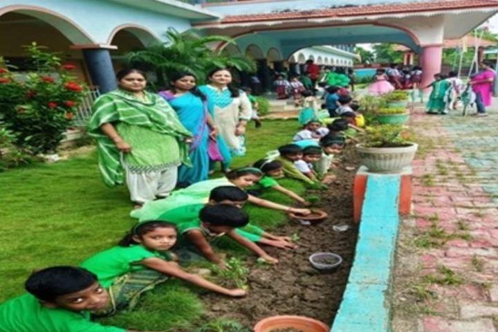 Bokaro Public Vidyalaya-Tree Plant