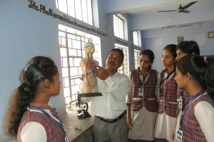 D A V Public School-Biology Lab