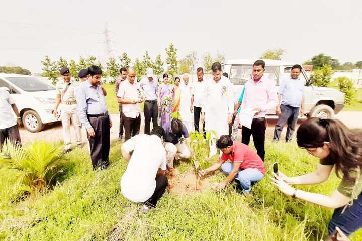 Esteem Public School - Tree planting
