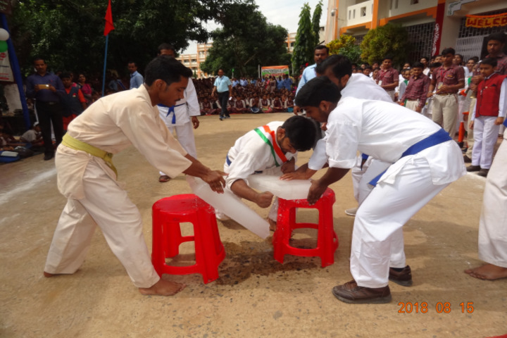 Geeta Devi Dav Public School-Karate