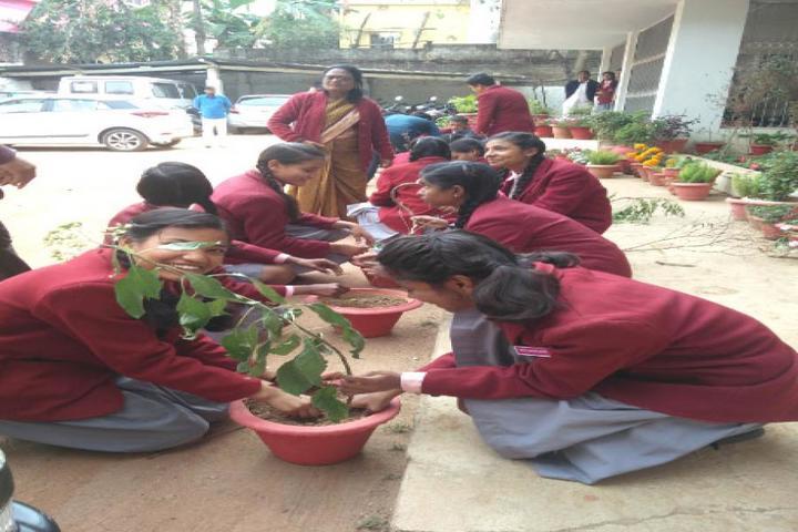 Holy Child Public School-Tree Plantation