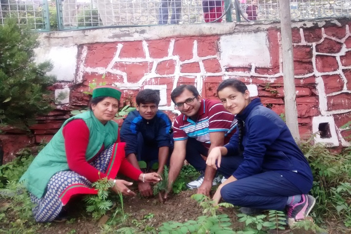 Jawahar Navodaya Vidyalaya - Tree planting
