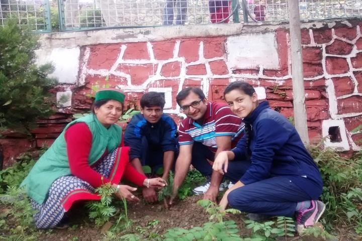Jawahar Navodaya Vidyalaya-II-Tree Plantation
