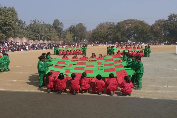 M K Dav Public School-Activity
