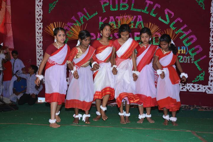 National Public School-Cultural Activity