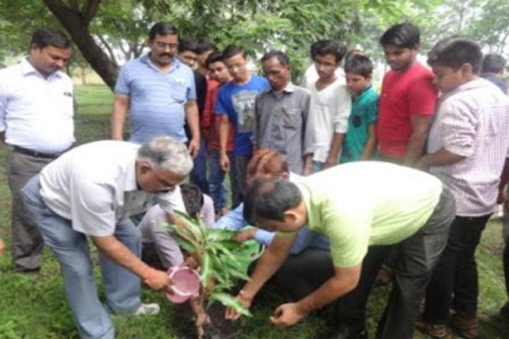 Tata D A V School-Plantation