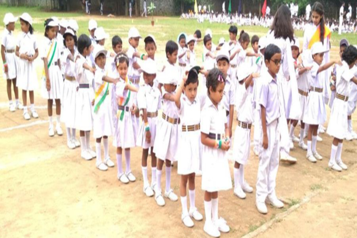 Tci Dav Public School-Independence Day