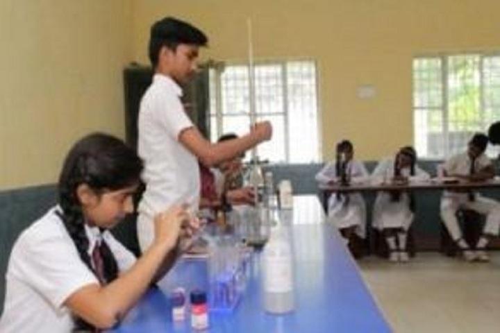 Vidya Vikash Public School-Chemistry Lab