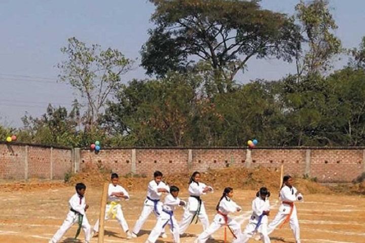 Vidya Vikash Public School-Karate