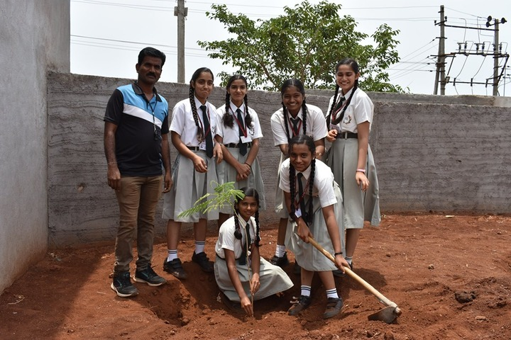 Angadi International School-Plantation
