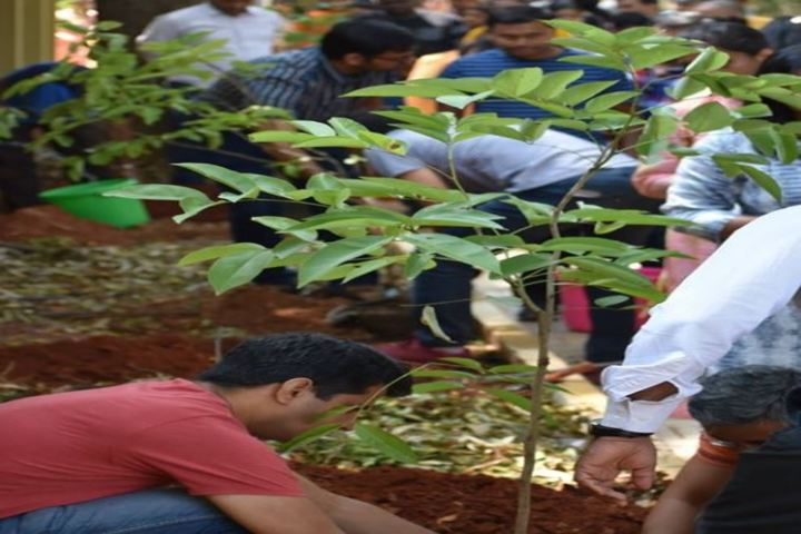 Auro Mirra International School-Plantation