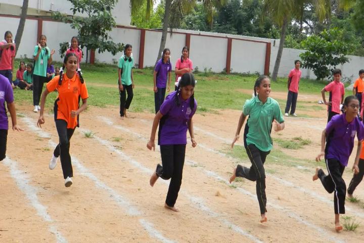 B M N Public School-Sports