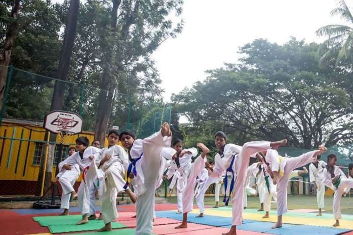 Orchids The International School-Karate