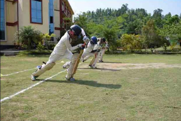 Axel Public School-Cricket