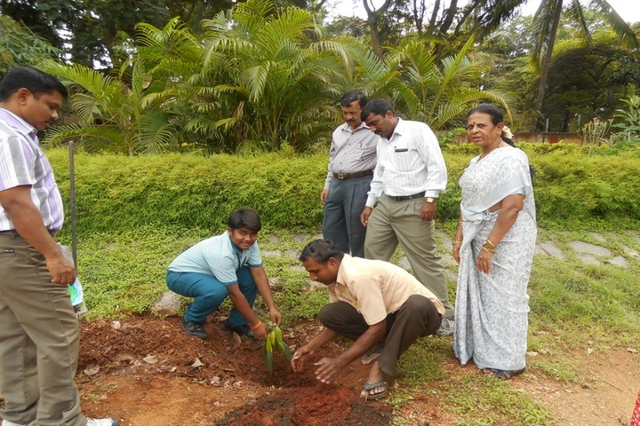 Cftri School-Tree Plantation