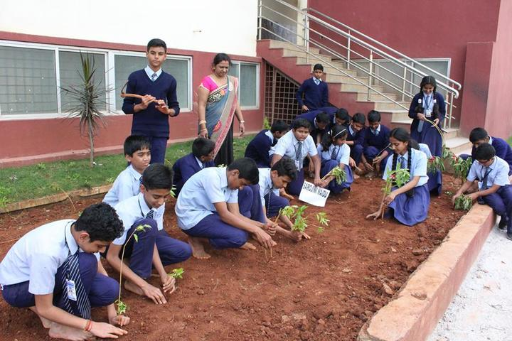 Christ School-Tree Plantation
